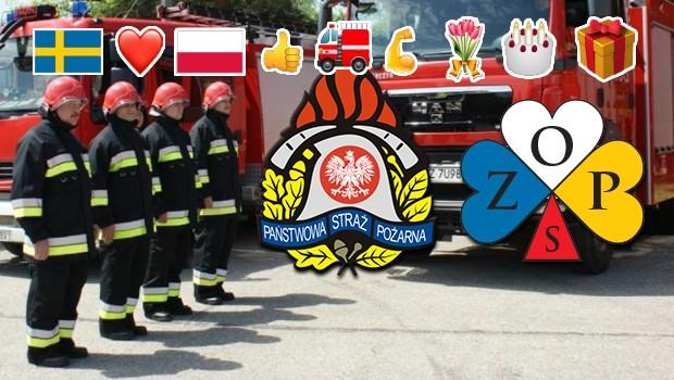 Zop Zrzeszenie Organizacji Polonijnych W Szwecji